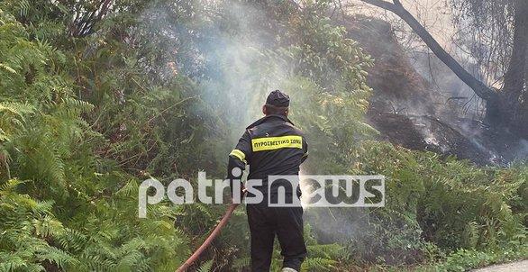Ηλεία: Συνεχίζεται για δεύτερη ημέρα η μάχη με τη φωτιά στα χωριά της Αρχαίας Ολυμπίας (φωτο)